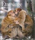 Cyril Ruoso, photographe français, primates