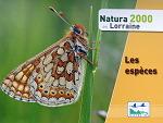 Natura 2000 in Lorraine book